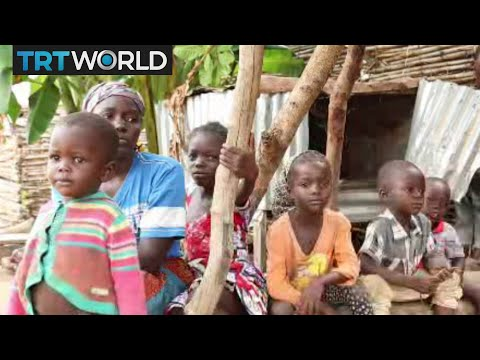 Nigeria IDP Camps: Camps struggle to house internally displaced