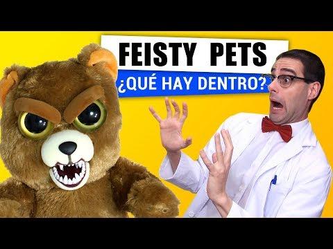 Qué Hay Dentro de un Feisty Pets? | En español