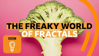 How fractals can help you understand the universe | BBC Ideas