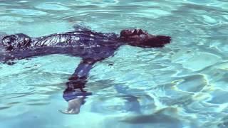 slenderbodies - oasis (video)
