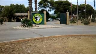 Mallorca Safari Zoo/Майорка Сафари Зоопарк в местечке Са Кома
