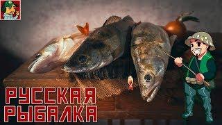 Російська Рибалка 4 - В гонитві за Судаком (Виїзд на р. Волхов)