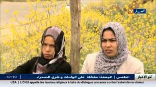 تيارت : اختين يتيمتين على حافة الطريق تعيشان ظروفا قاسية