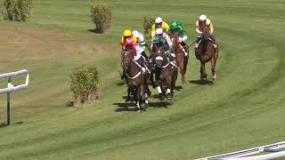 Vidéo de la course PMU STEEPLE-CHASE DE DEBUT