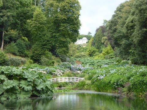 Places to see in ( Falmouth - UK ) Trebah Garden