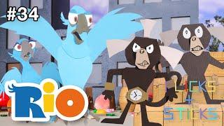 "Flicks + Sticks | Rio ""Birds vs Monkeys"" #34"