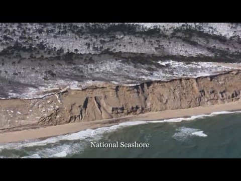 Cape Cod Tour-Monomoy, Seals, National Seashore, Provincetow
