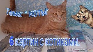 Вышивка КОТЫ. Про котов. 6 ввидов картин с котиками по доступной цене.