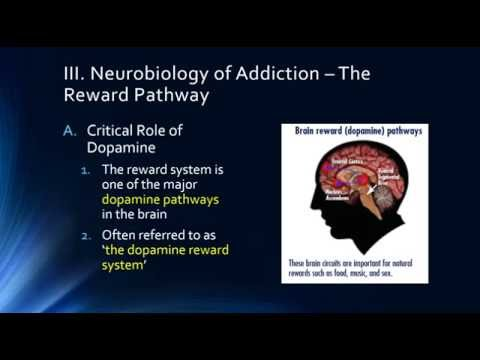 Epidemiology and Neurobiology of Addiction