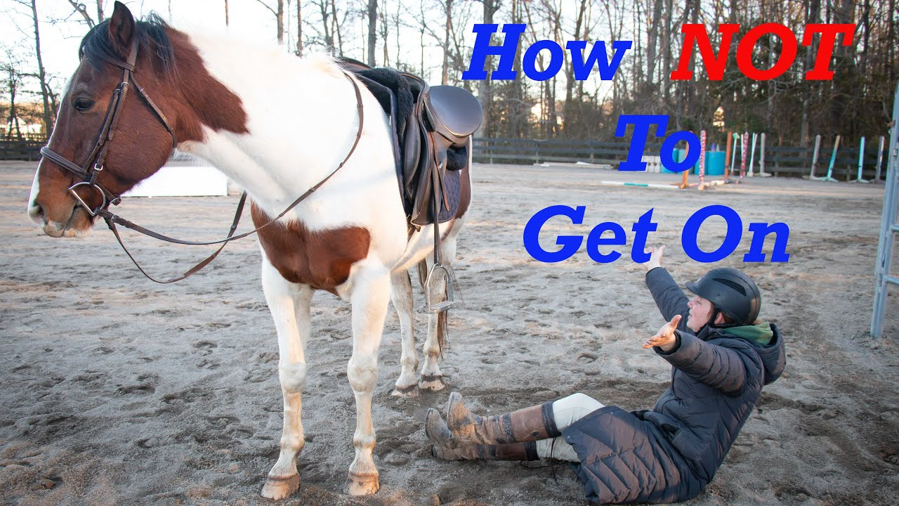 How to Mount on your Horse Correctly