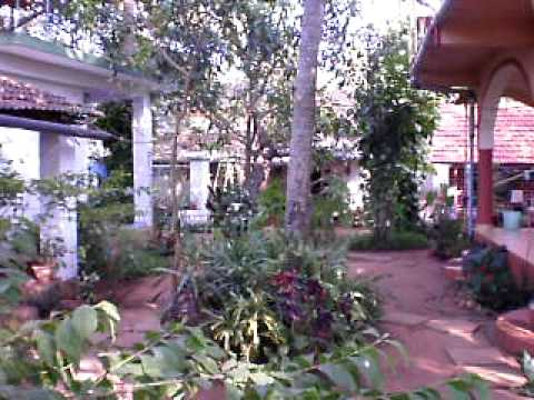 A Promotional video for Anjunapalms Guesthouse