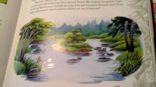 Обзор на путеводитель Коты воители  Секреты племён  Часть 4 1