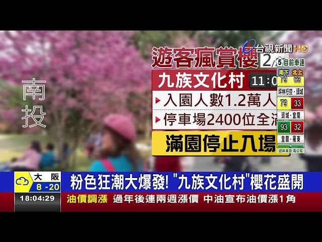 夯!九族文化村人潮爆滿園方宣布停止入園
