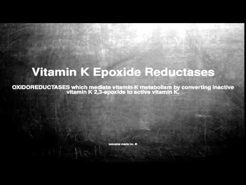 Medical vocabulary: What does Vitamin K Epoxide Reductases mean