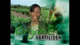 Organic Fertilizer In Jamaican