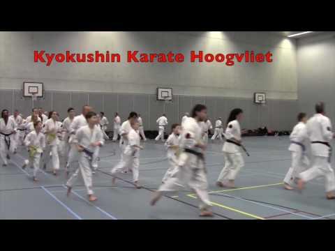 IBK-training 18 maart 2017 bij Kyokushin Karate Hoogvliet