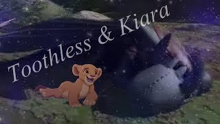 Toothless & Kiara