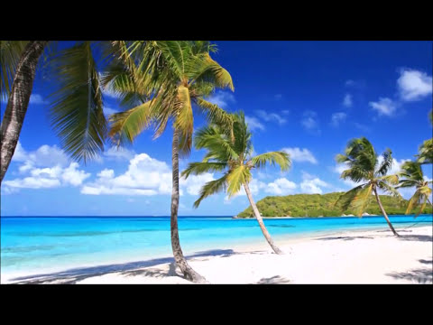 2017 Calypso & Hawaiian Music - Trinidad Tobago & Hawaii Best Steel Drums Music Mix