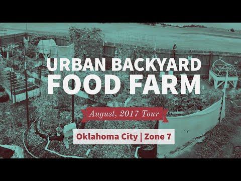 August Summer Garden Update Tour Urban Zone Oklahoma Backyard Farm