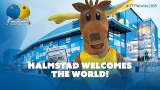 Halmstad Welcomes the World!