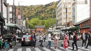 新緑の京都(2) 祇園の舞妓編 2019年 Kyoto in fresh green ~ Maiko at Gion  edition