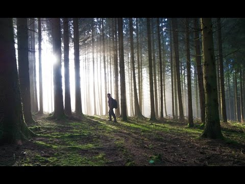 """Metal detecting """"Ardennes Forest (SPECIAL)"""" (25)"""
