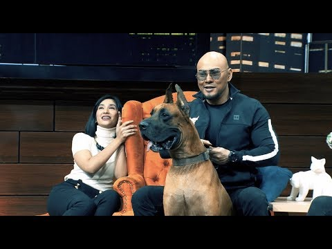 Great Dane, Anjing 'Scooby Doo' |   | HITAM PUTIH (25/03/19) Part 3
