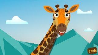 Por que comprar no Girafa? - Descubra!