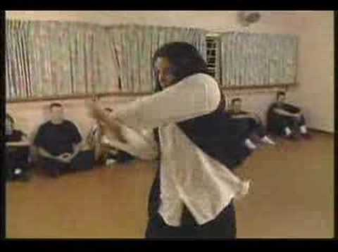 Chen taijiquan interview in south africa with jose Figueroa