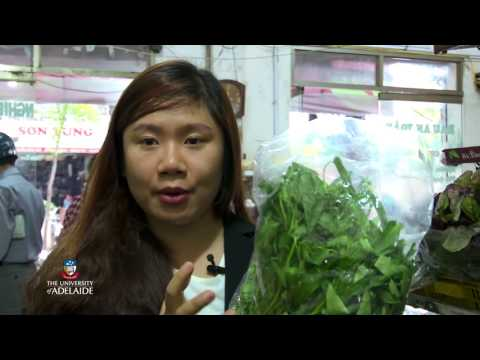 Agribusiness - The University of Adelaide