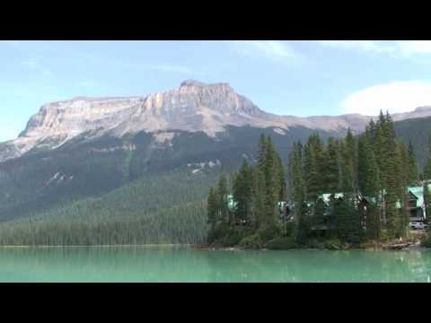To Banff and Yellowstone, in search of bull elk