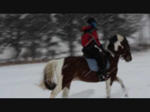 First time riding my new pony