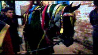 Mehar Shah Bukhari Saij  Muharram 2011-2012/1433 Hyderabad sindh Part 2