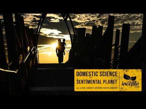 Domestic Science - Sentimental Planet (Positive Addiction Remix)