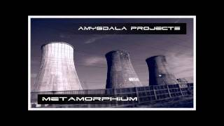 Amygdala Projects - Hologene