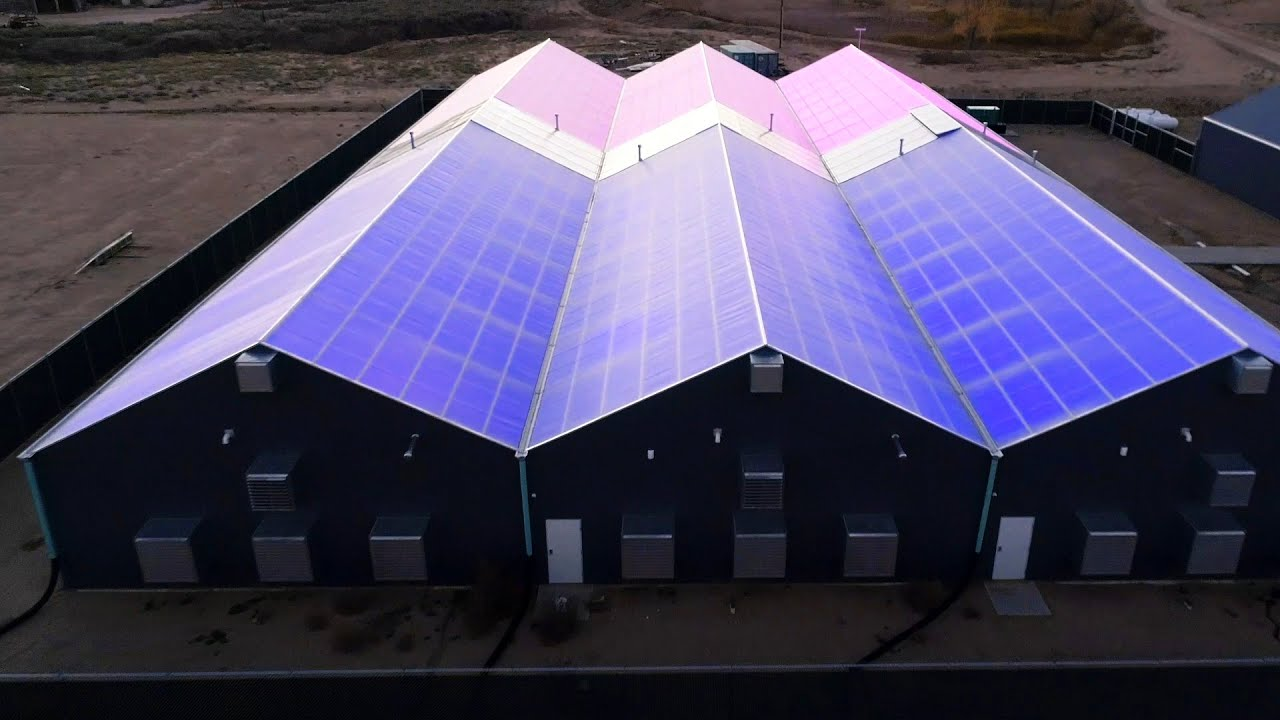 Monte Fiore Farms Grows High-Quality Greenhouse Cannabis with LumiGrow LED  Grow Lights (FULL VIDEO)