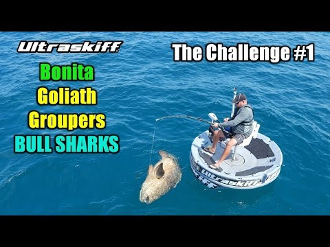Goliath Groupers and Massive Sharks on the Ultraskiff 360 Watercraft