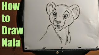 How to Draw Nala from The Lion King