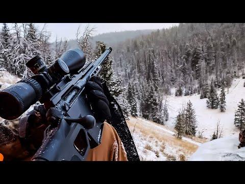 Montana Hunt Day 2
