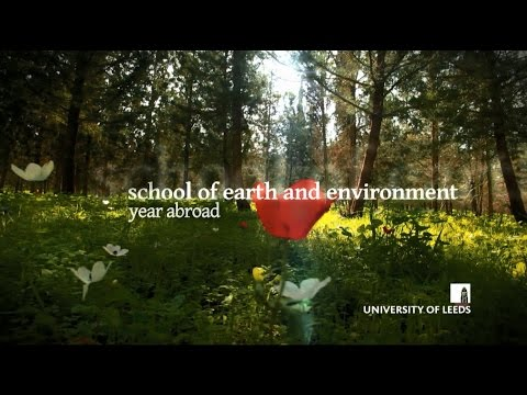 School of Earth and Environment, Year Abroad