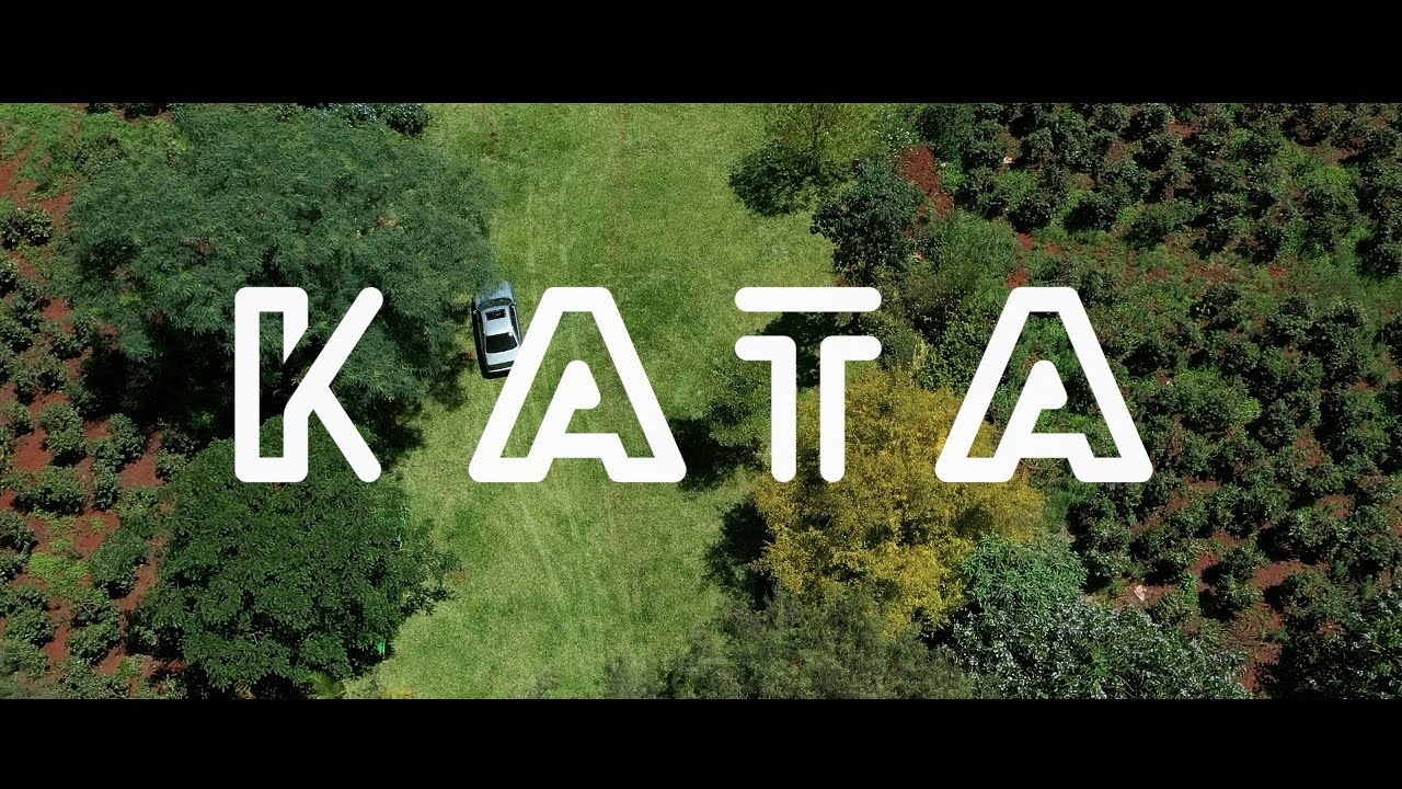 Barry - KATA ft Ms.Samba