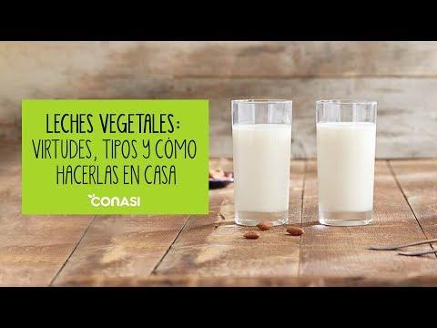 Leches vegetales: virtudes, tipos y cómo hacerlas en casa