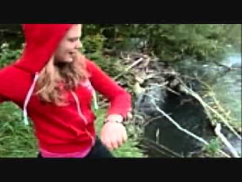 Girl Throws Puppies In River Graphic 18only Youtube