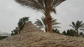 Египет пляж отеля облачно Egypt Beach Hotel Queen Sharm Resort bad weather cloudy