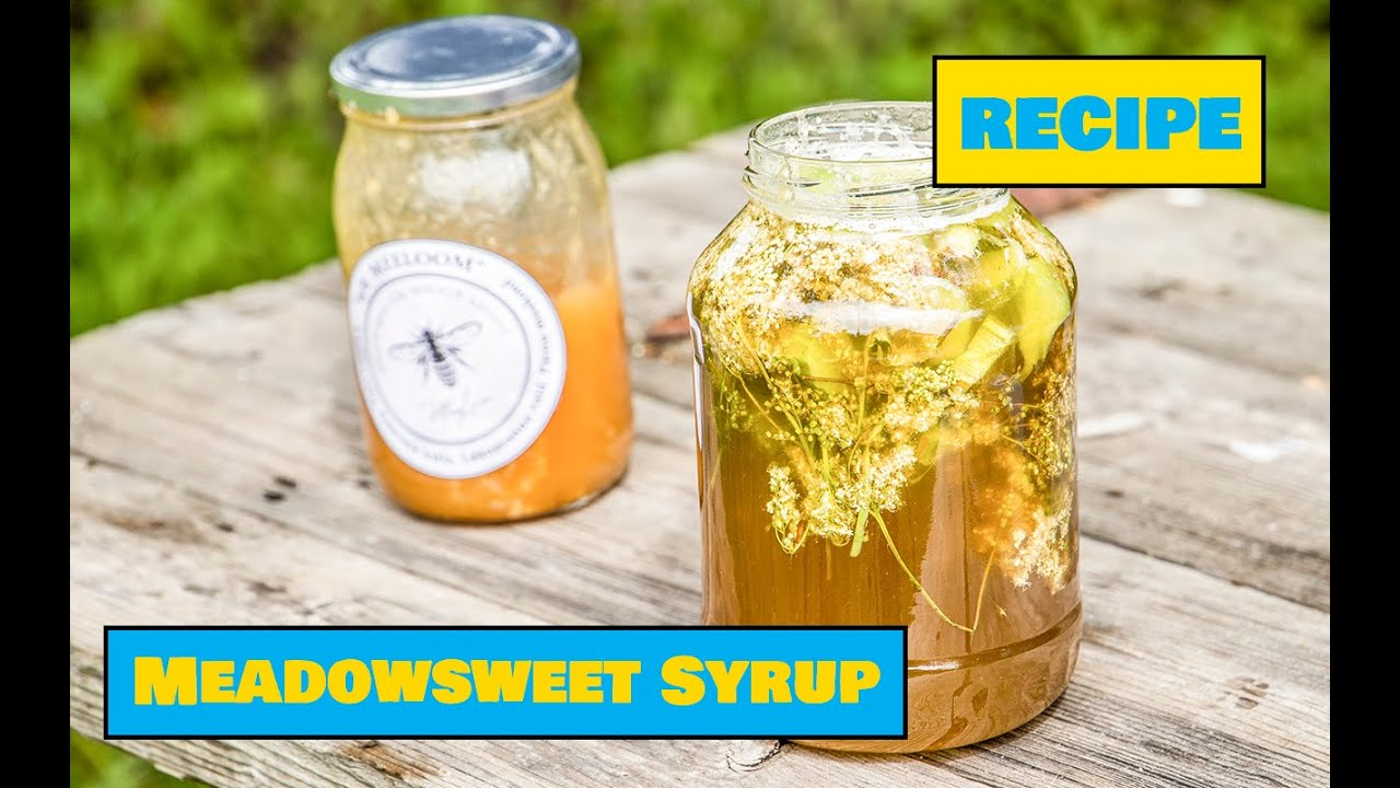 Meadowsweet Syrup / Angervaksa siirup - Easy Outdoors Cooking