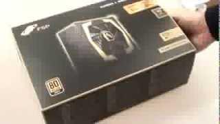 Nguồn FSP Aurum 600W  80PLUS Gold