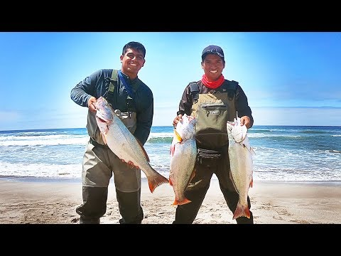 57 - Pesca