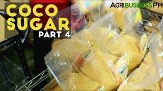 Coco Sugar Part 4 : How to make Coco Sugar | Agribusiness Philippines