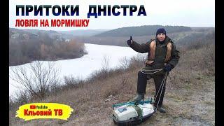 Притоки Дністра