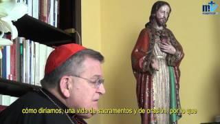Cardenal Burke: Es del demonio decir que por defender el dogma estamos contra el Papa